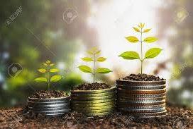 Los empleados agrarios por cuenta ajena pueden diferir sus ingresos